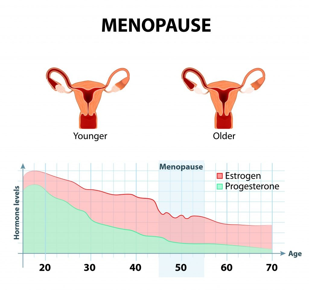 fluctuation of hormones that occurs during menopause